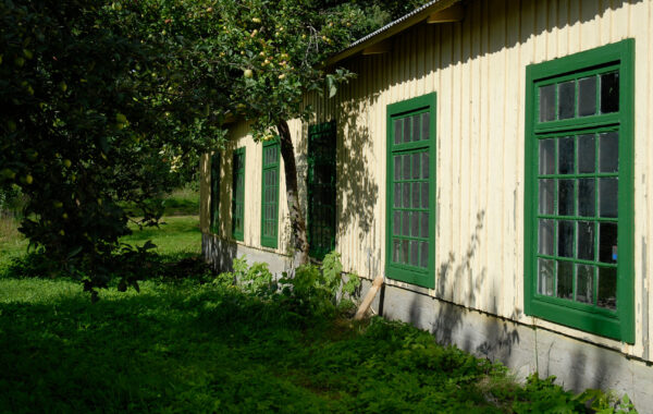 En husvägg, gulputsad med gröna fönster